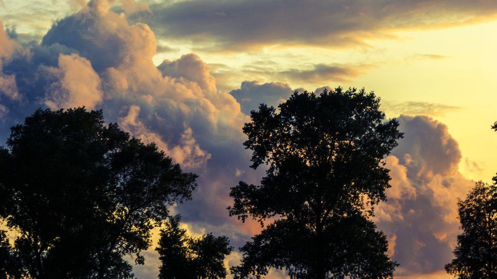 Astronomické léto začne chladně a deštivě. Brzy se ale dostaví tropy