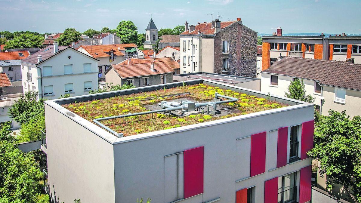 Zelené střechy jsou hit, stát zvýšil dotaci