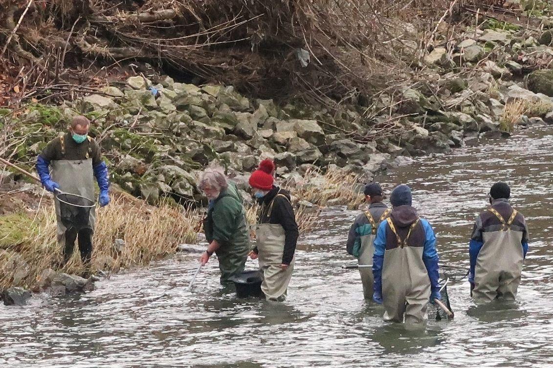 Biologové z Akademie věd strávili u řeky Bečvy tři dny.