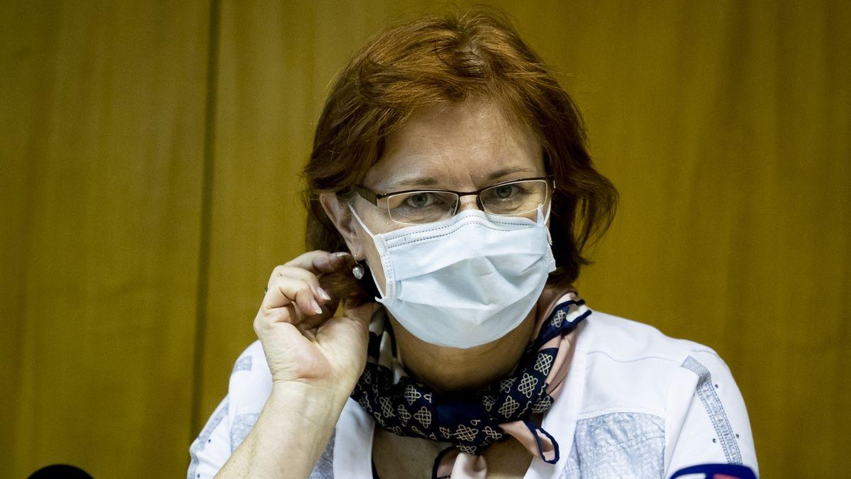Jak bude vypadat plošné testování na koronavirus