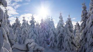 Začalo meteorologické jaro. Bude sněžit