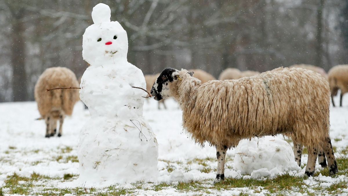Srážky i teplotní výkyvy. Počasí v závěru ledna bude pestré