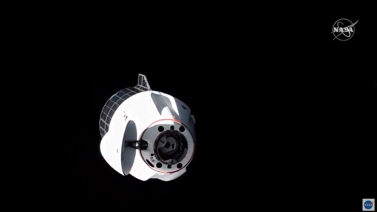 Loď Dragon dopravila na ISS olihně a želvušky