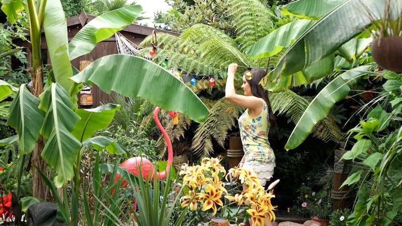Milovnice květin má doma tropický ráj v hodnotě 450 tisíc korun