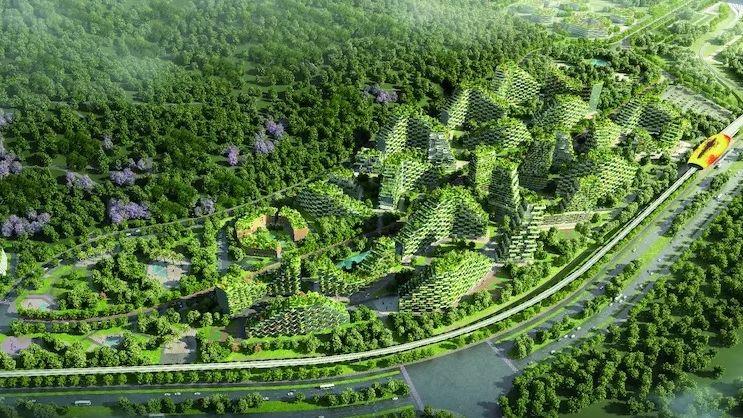 Světový den lidských sídel: Města mohou pomoci se snížením emisí uhlíku