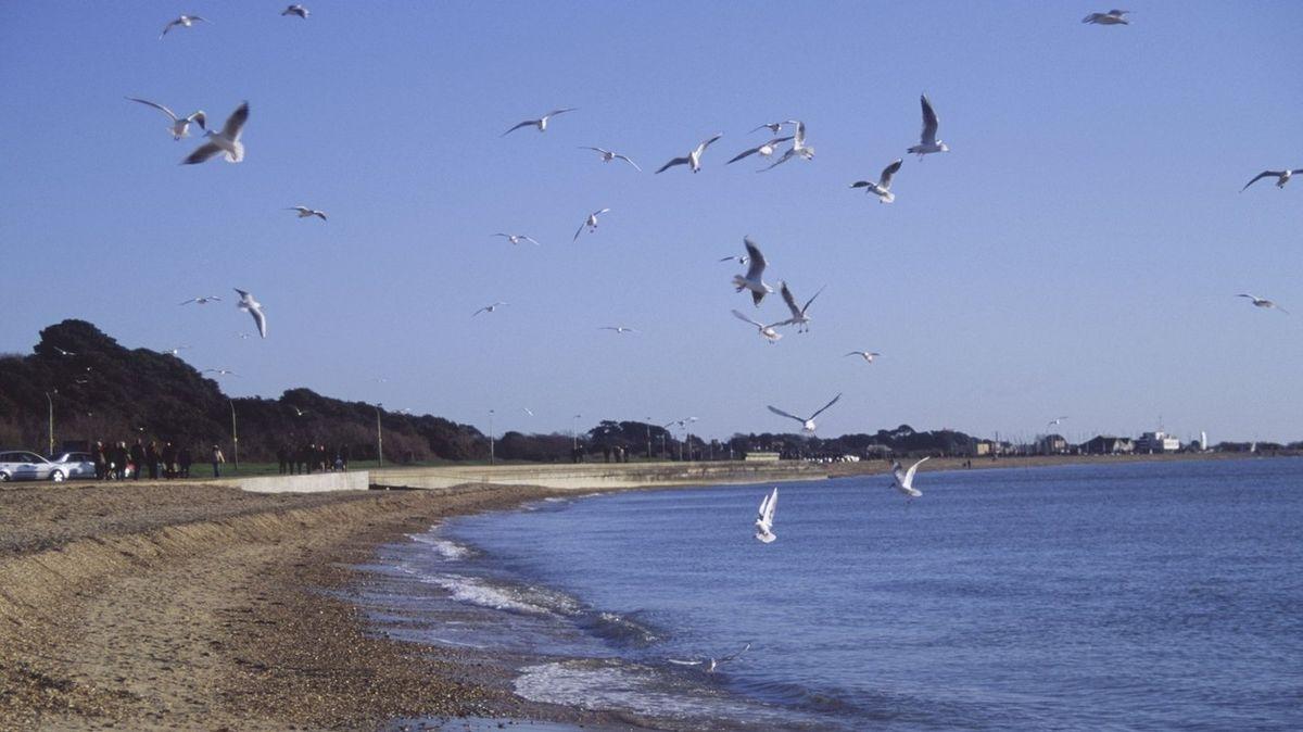 Bouřky odkryly na pláži připomínku Dne D