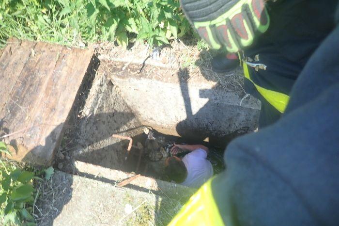Nejdřív pes a pak i jeho majitel skončili v betonové vpusti