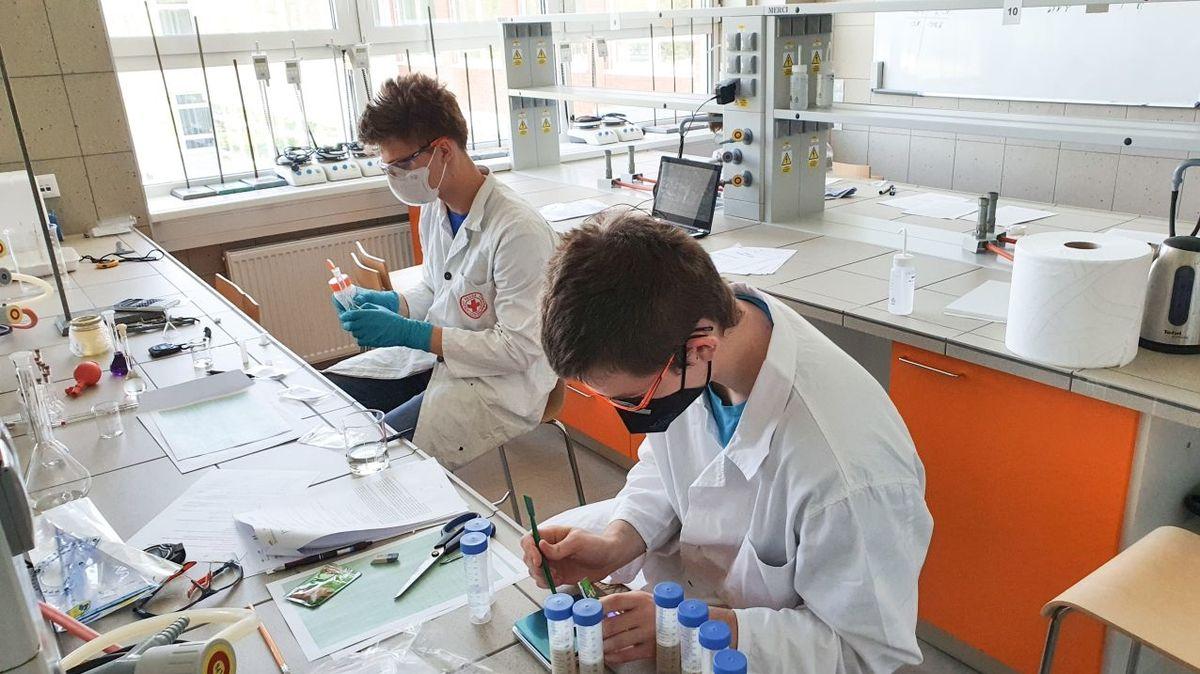 Čeští středoškoláci získali zlatou medaili na Evropské olympiádě experimentální vědy