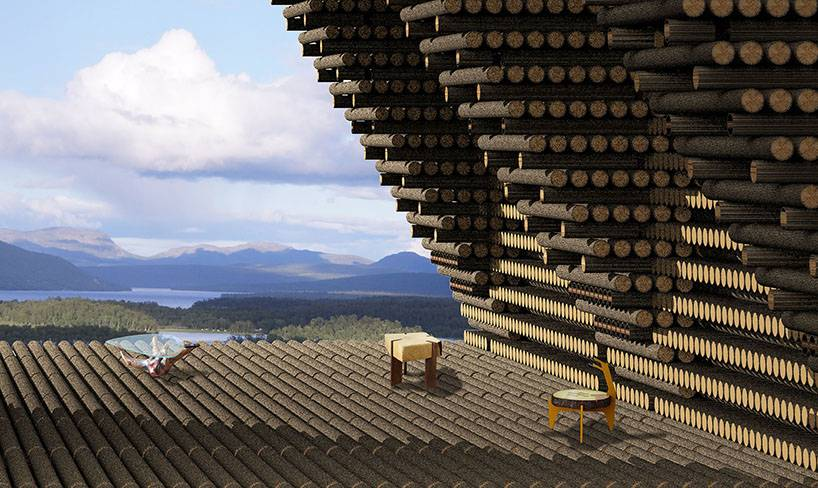 V bance by bylo uloženo dřevo z nadprodukce, a především dřevo vytěžené po různých přírodních kalamitách, které se dosud jen bez účelu spaluje.
