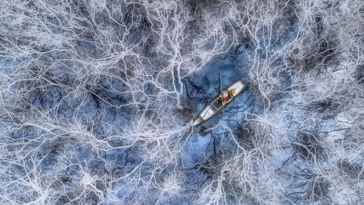 Rybaření v mangrovech (Vietnam) – Vítěz kategorie Lidé. Rybář začíná rybařit v mangrovech v laguně Tam Giang v provincii Hue. Mangrovy během zimy ztratí všechny své listy a zbělají.