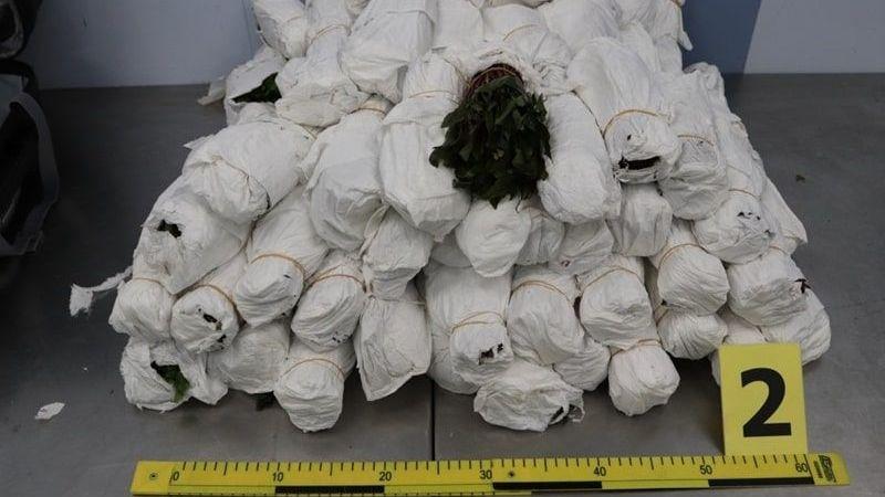Trojice měla v kufrech na letišti v Praze přes 60 kilo zakázané rostlinné drogy