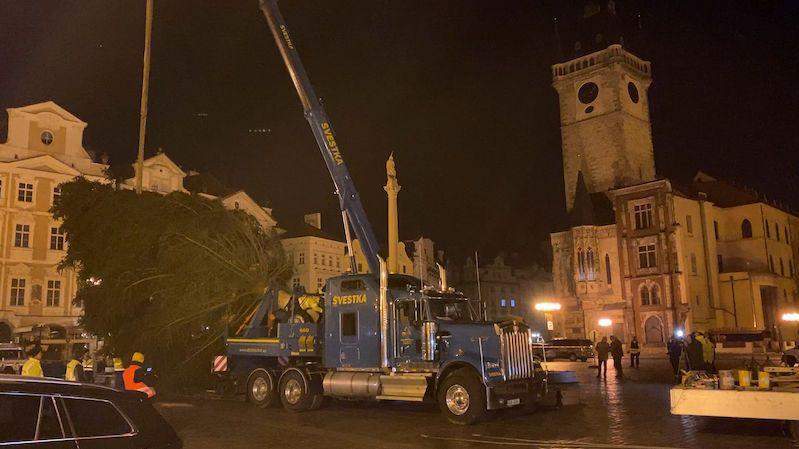 V Praze už stojí vánoční strom, s trhy se letos nepočítá