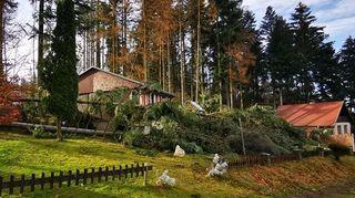 Česko zasáhne silný vítr, varovali meteorologové