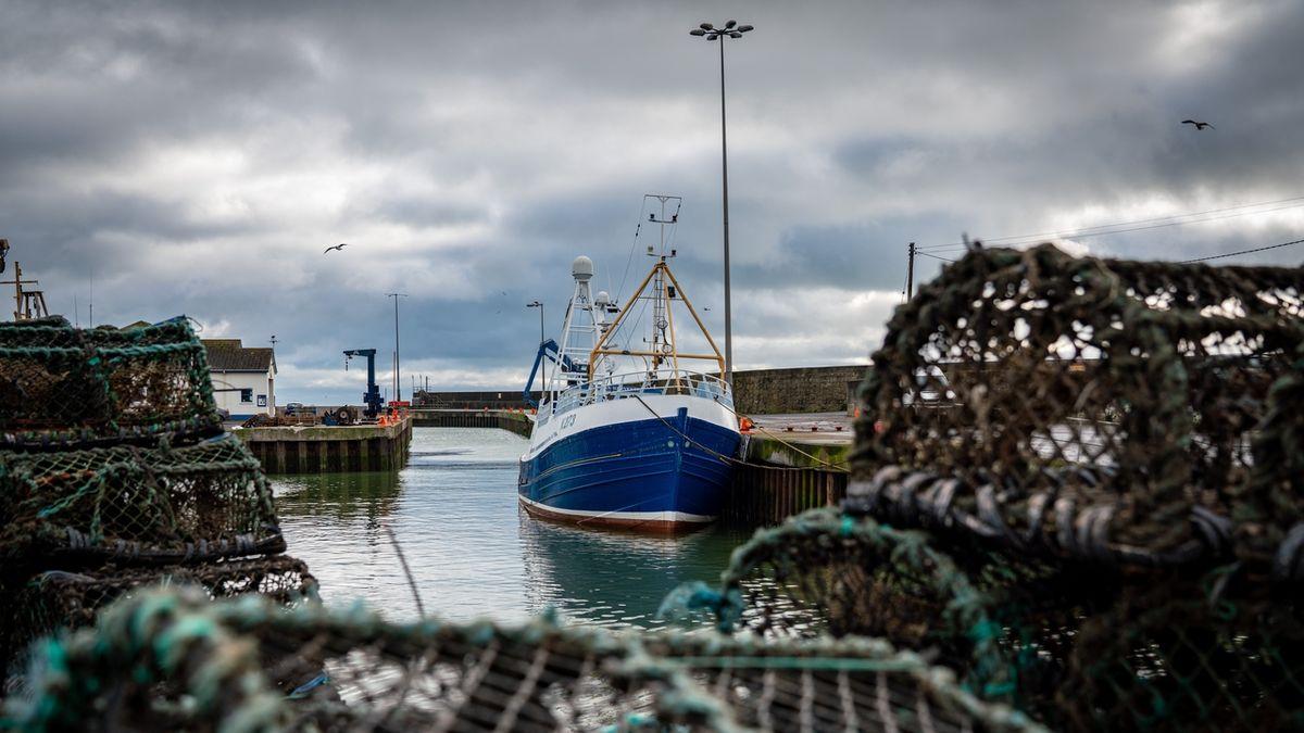 Britské ryby byly symbolem brexitu, rybáři jsou s dohodou nespokojeni