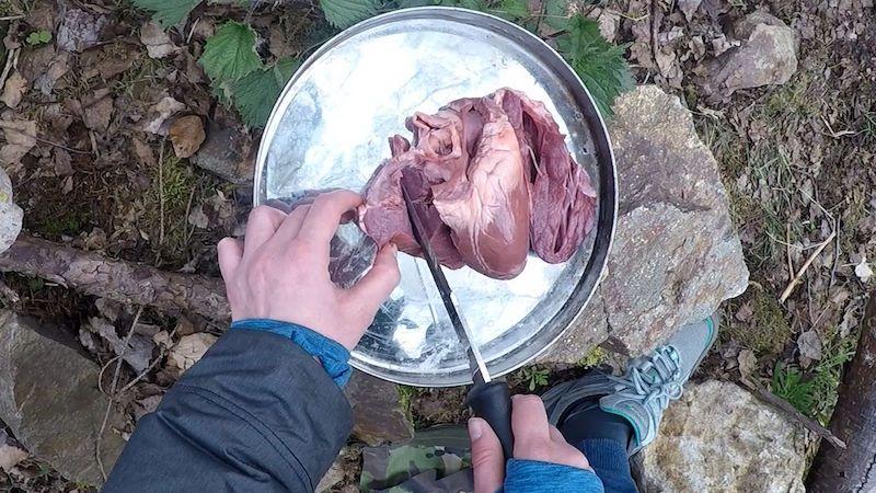Když máte v lese hlad, neohrnujte nos nad červy