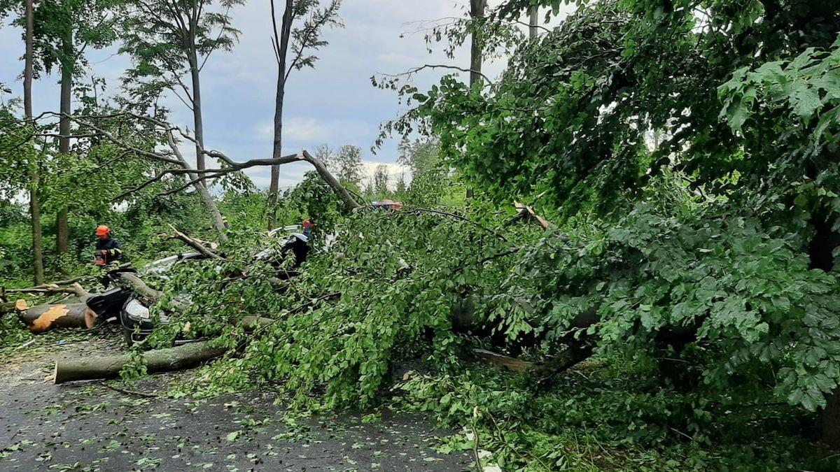 Na Písecku spadl strom na auto, zemřeli dva lidé, dvě děti byly převezeny do nemocnice