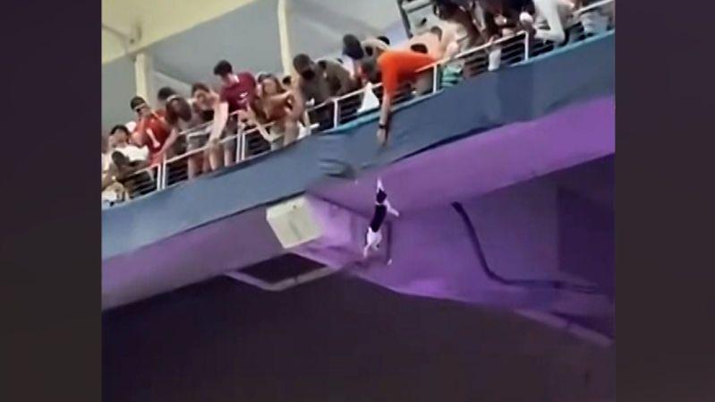 Kočku padající z tribuny stadionu zachránila americká vlajka