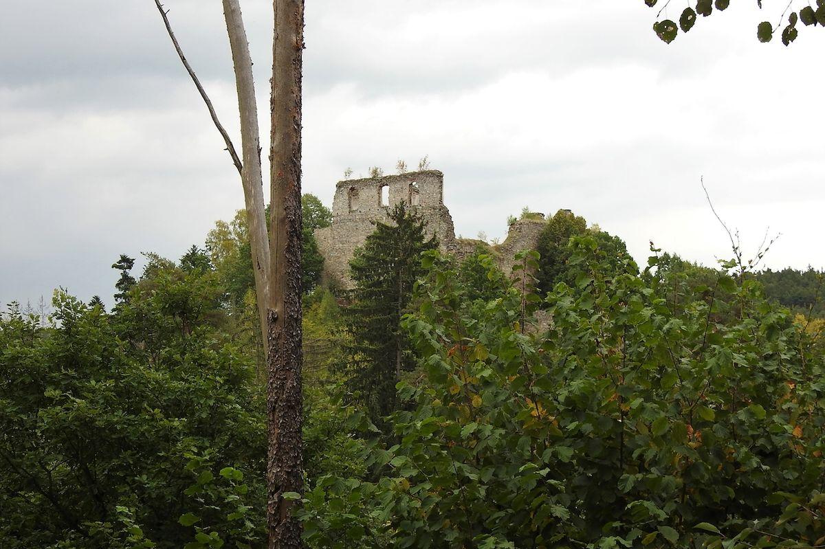 Hrad není z dálky téměř vidět, vše zakrývají stromy.