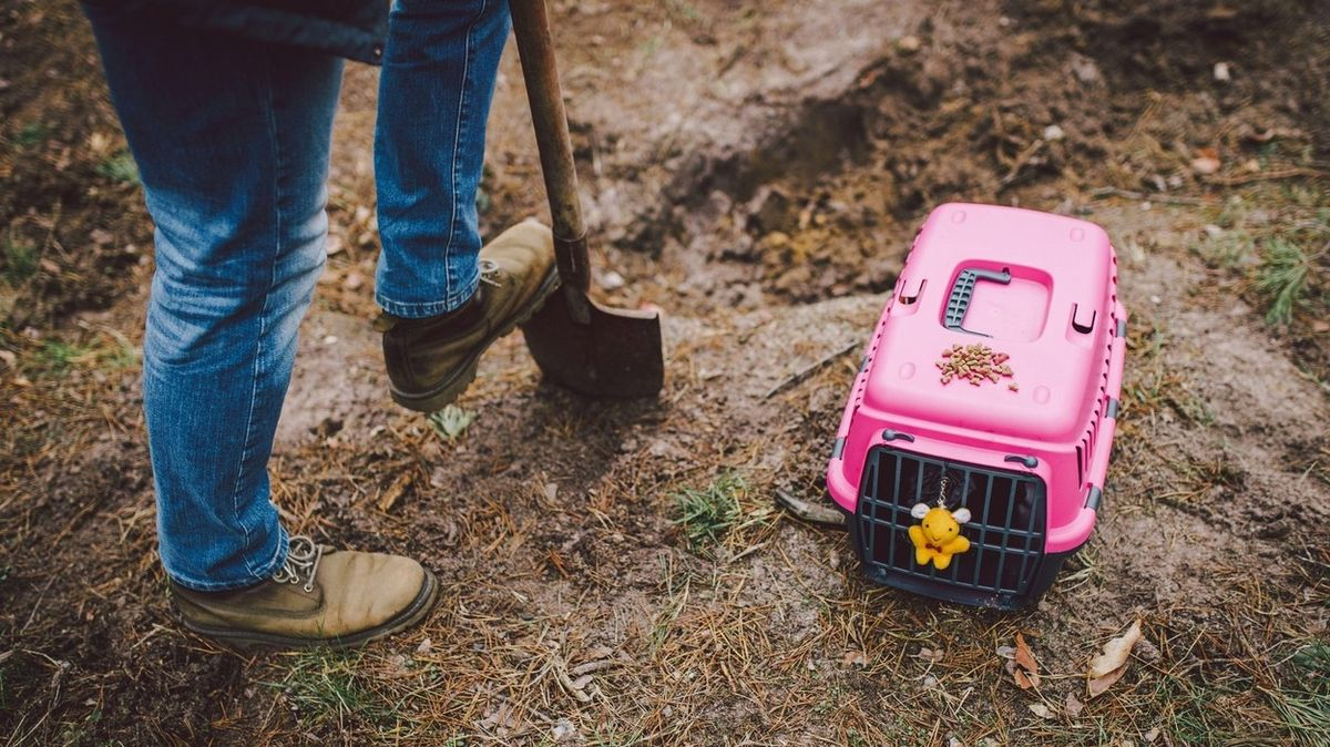 Po smrti domácího mazlíčka dva dny volna, navrhují v Kolumbii