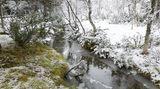 Na Německo se valí sníh, dorazí ido Česka
