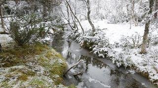Na Německo se valí sníh, dorazí i do Česka