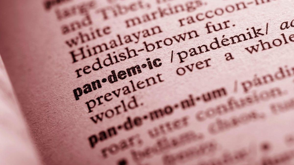 Pandemie, aerosol, reprodukční číslo. Jazykovědci hlásí unikátní rok