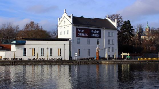 Ze zavřených galerií: Museum Kampa vystavuje sochařský trojlístek