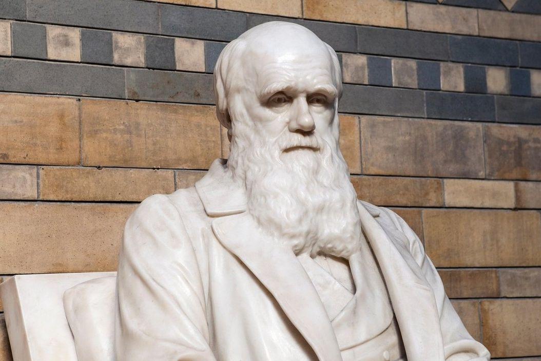 Socha Charlese Darwina v londýnském Přírodopisném muzeu