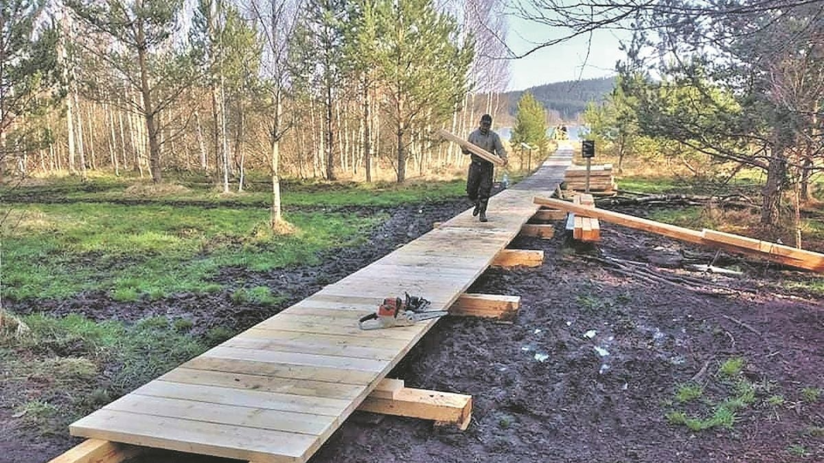 Na Šumavě se otevírá stezka Olšina