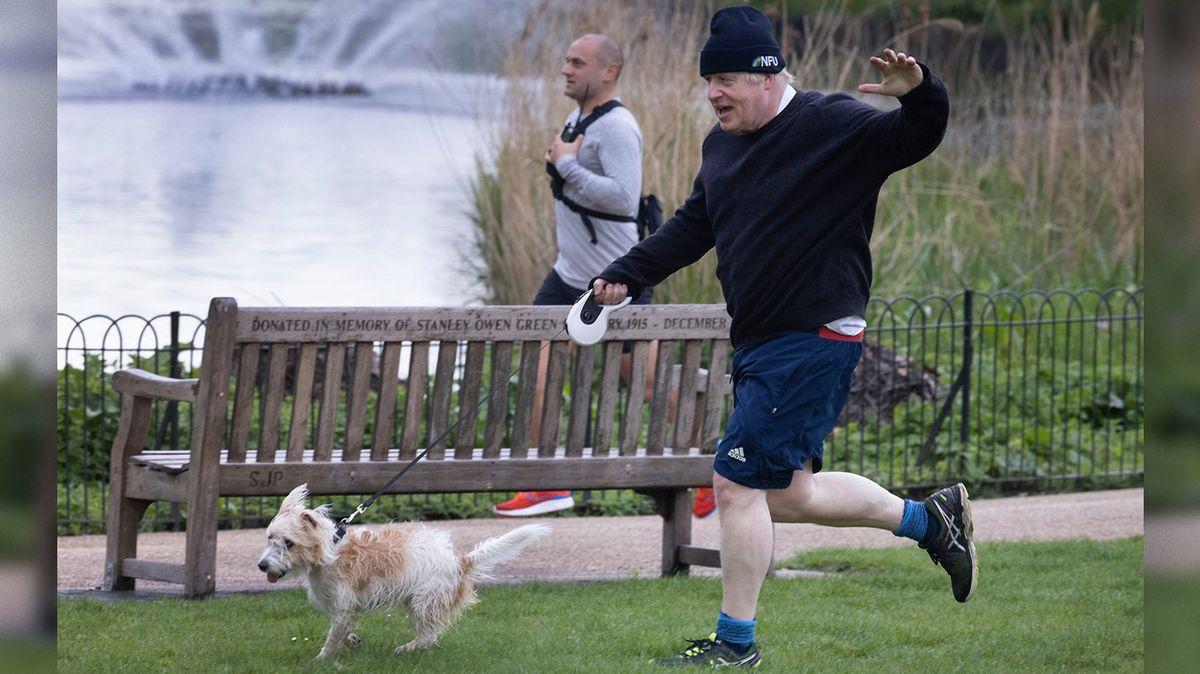"""Britskému premiérovi dělá starosti """"milostné puzení"""" jeho psa Dilyna"""
