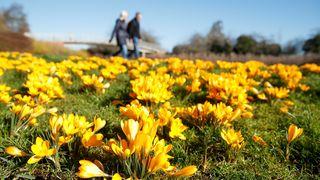 Zlom v chladném březnu přijde ve druhé polovině měsíce, tvrdí meteorologové