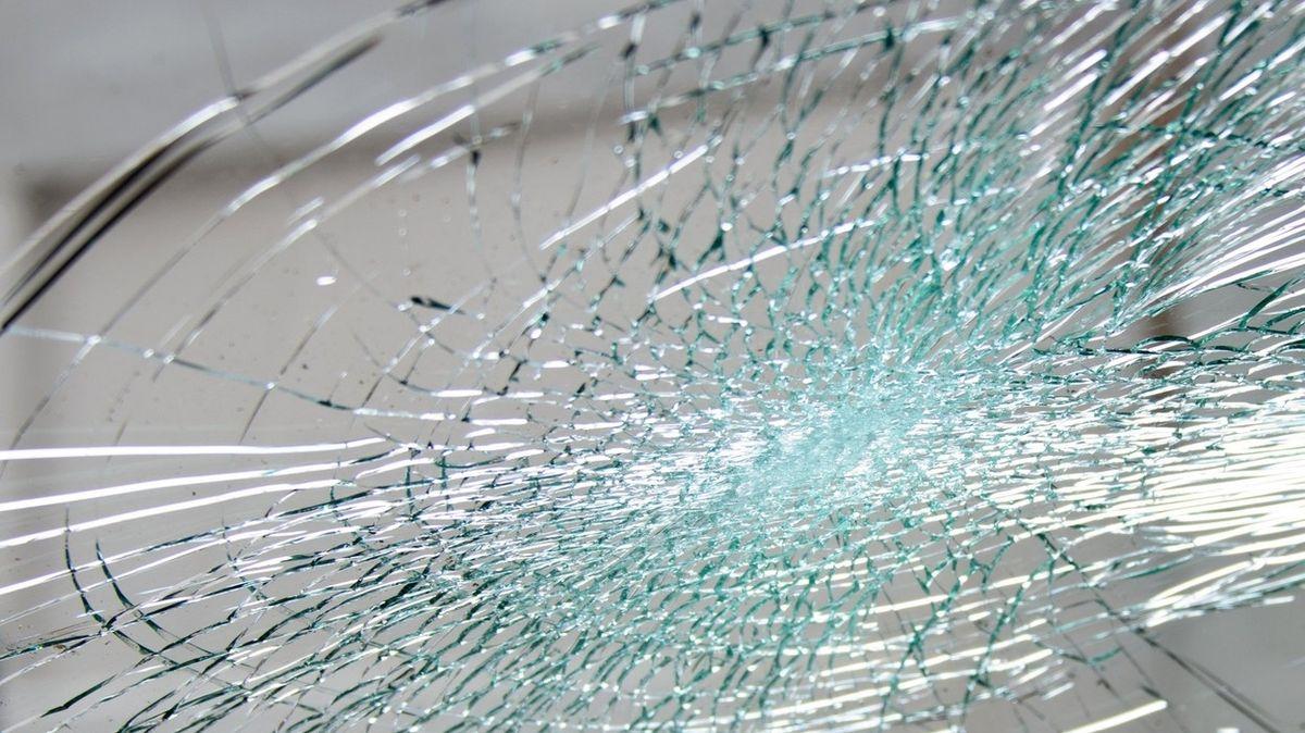 Želva prolétla čelním sklem auta a zasáhla seniorku do hlavy