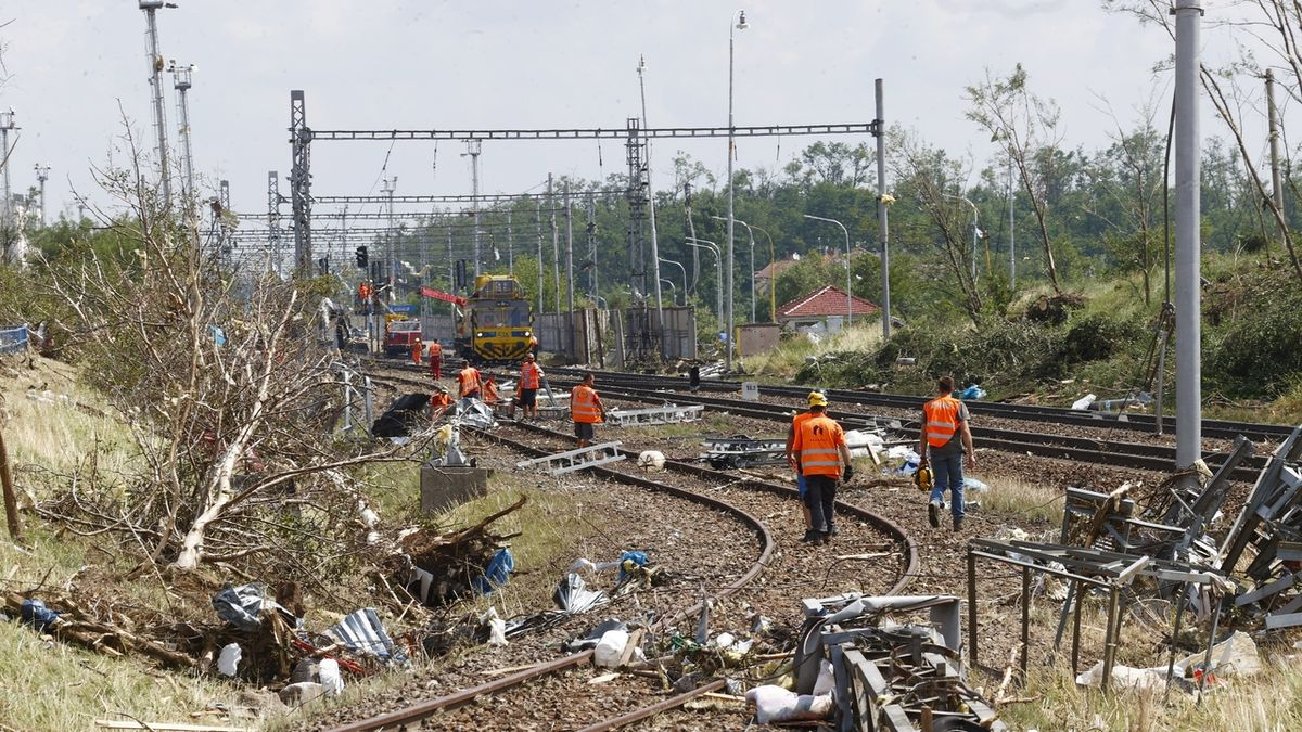Tornádo na jižní Moravě zničilo většinu stromů