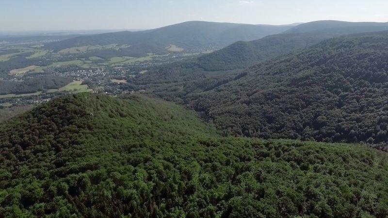 Prohlédněte si Jizerskohorské bučiny, novou památku UNESCO, z ptačí perspektivy