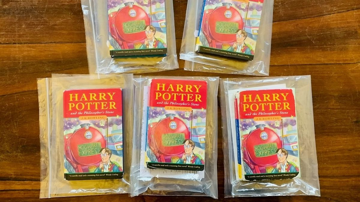 Vzácný a nepoškozený výtisk Harryho Pottera se vydražil za miliony