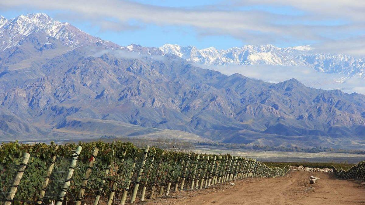 Za nejlepší vinařskou destinací musíte přes polovinu světa