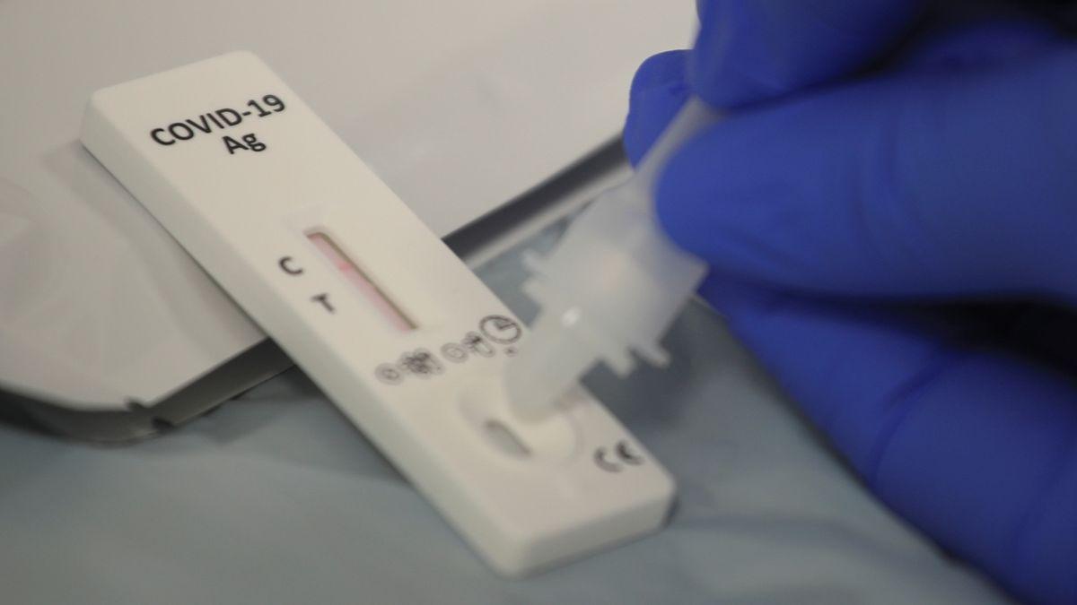 Koronavirus, rakovina i HIV. Minitester odhalí nemoci už v terénu