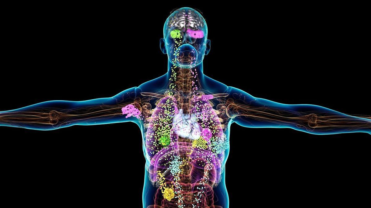 Čeští vědci mají protinádorovou látku, která zabraňuje metastázování