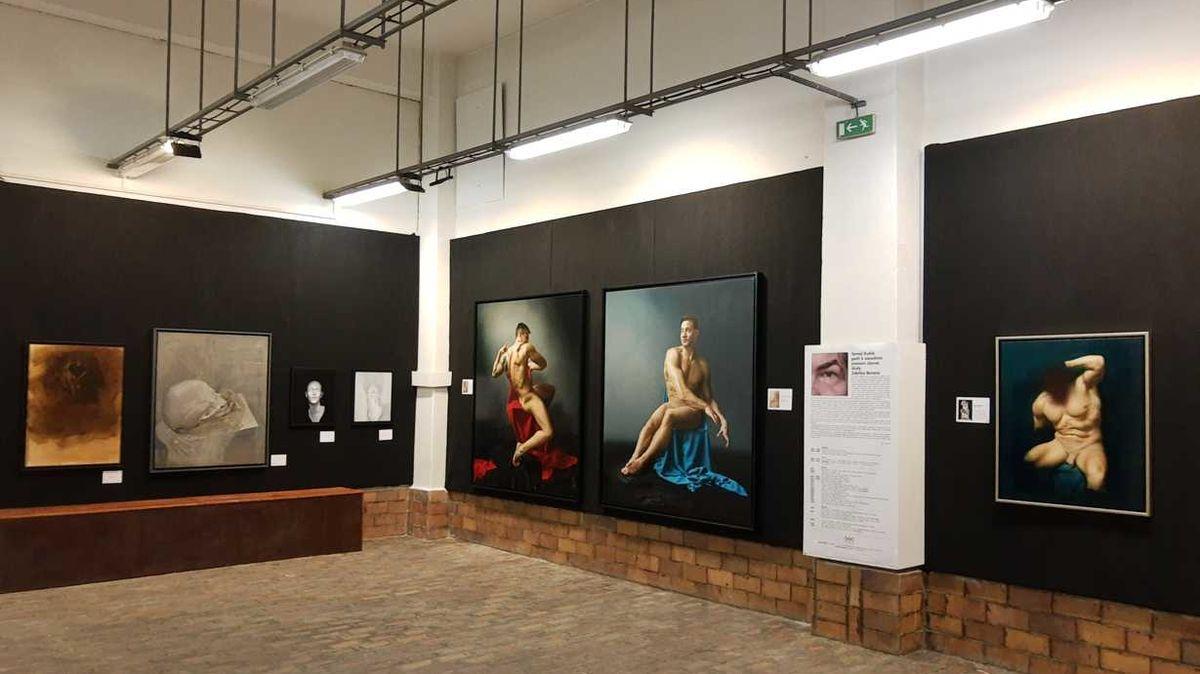 Ze zavřených galerií: Výstava Michelangelo v Lockdownu prodloužena