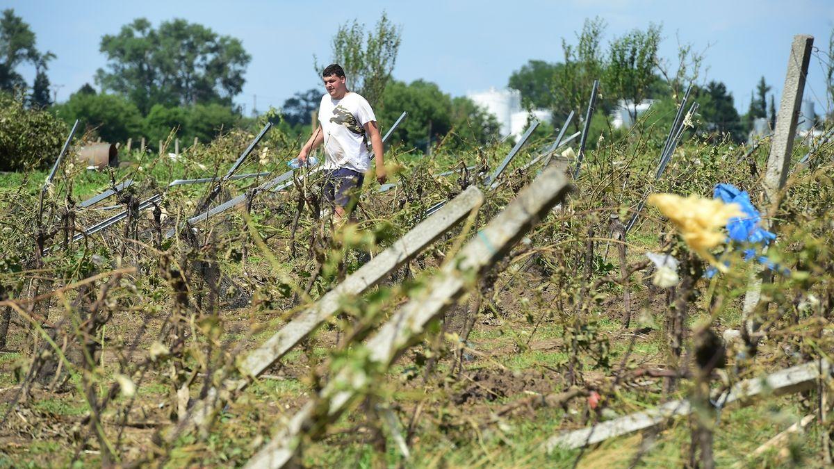 Tornádem poničené obce potřebují pomoc i s čištěním polí a vinic