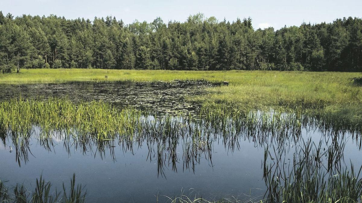 Na jihu Čech přibývají památky i rezervace