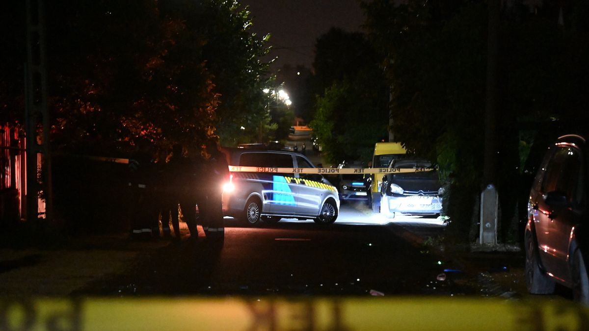 Maďar vyvraždil členy bývalé rodiny, zabil i svého syna