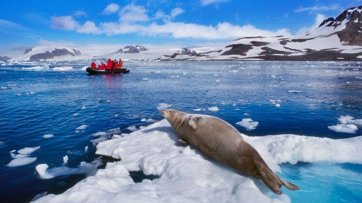 Společnost hledá dobrovolníky na vědeckou expedici do srdce Antarktidy
