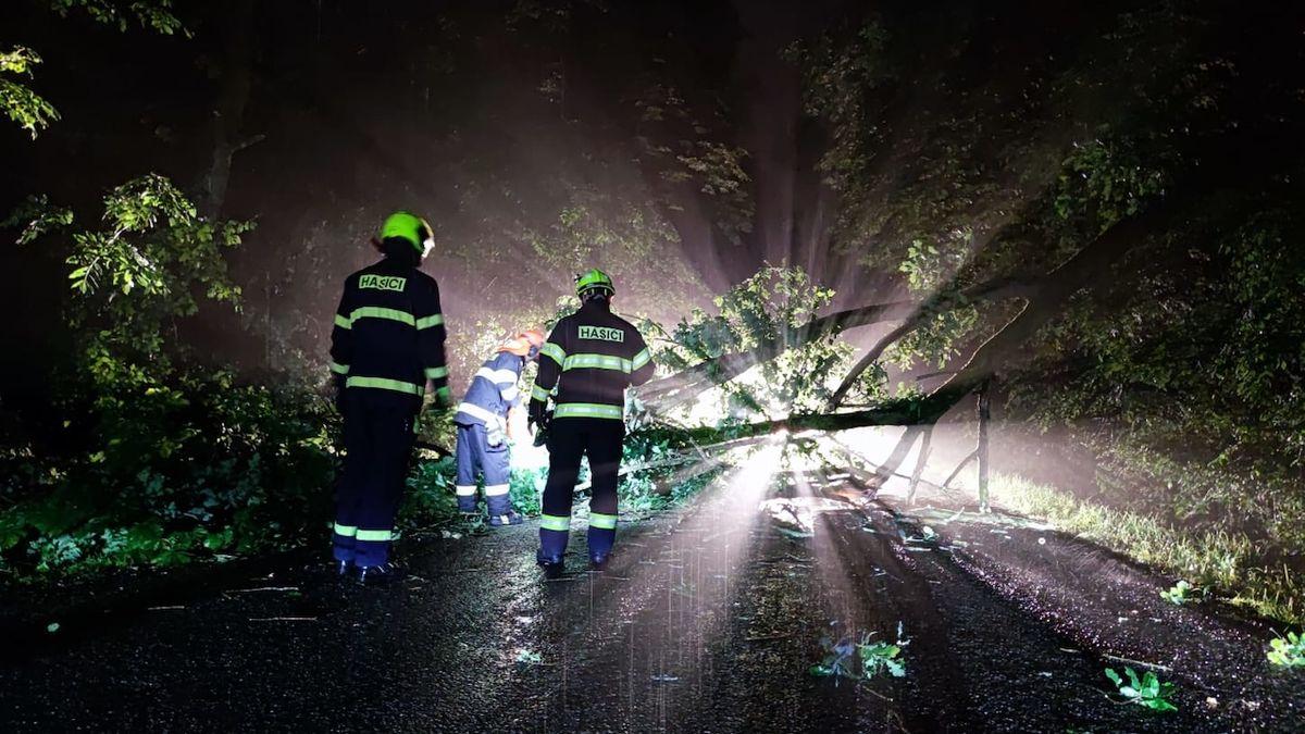 Cyklista na Pardubicku vyjel za bouřky, spadl na něj strom