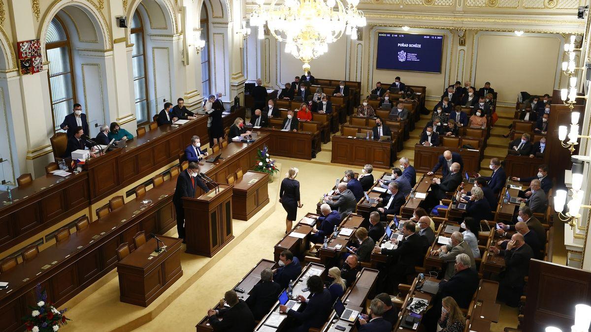 Sněmovna rozhodne, zda zakáže kojenecké ústavy