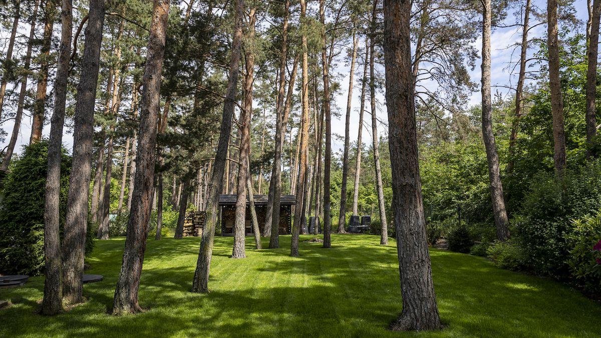 Inspirativní příběh lesní zahrady