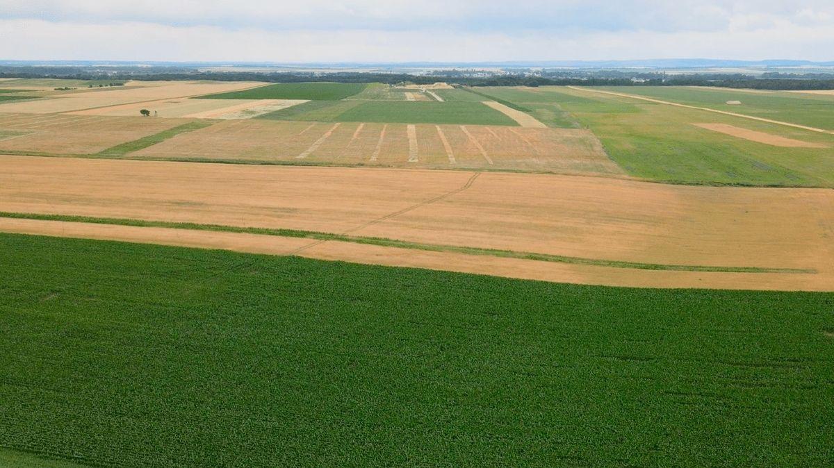 Trápí Vás rostoucí inflace auvažujete oinvestování do zemědělské půdy?