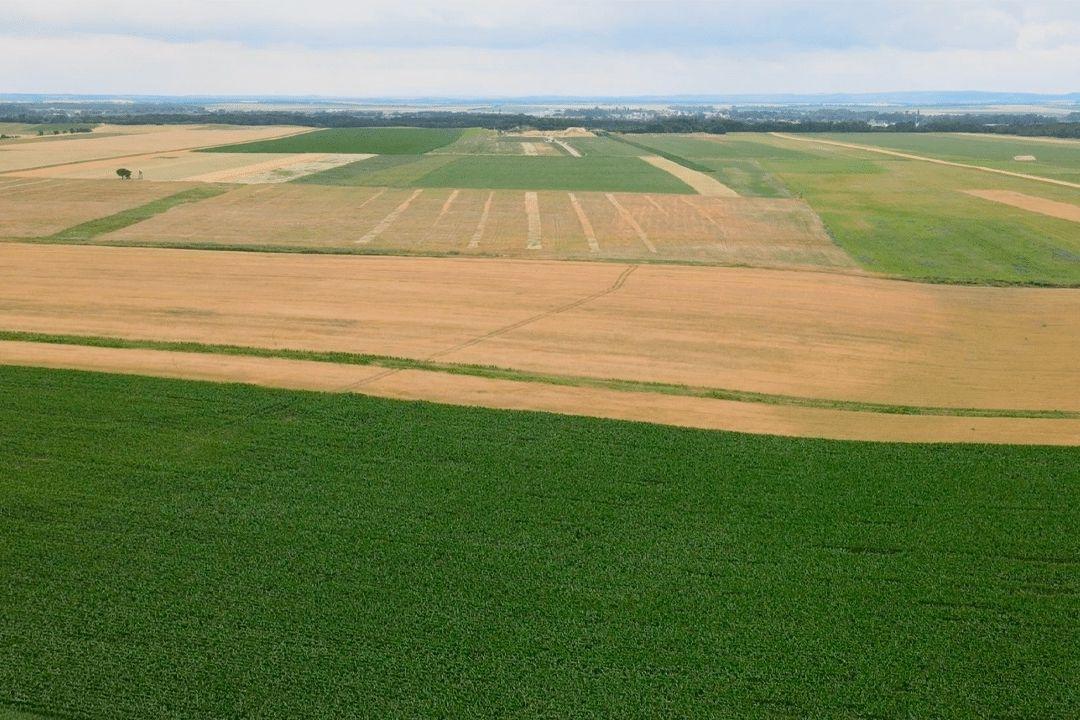 Soubor zemědělských pozemků na jížní Moravě