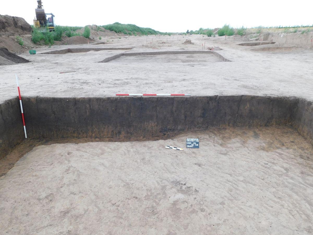 Pohled na síť čtvercových sond v mocném hradištním kulturním souvrství, ve které archeologové zachytili tři horizonty původního povrchu a řadu objektů.