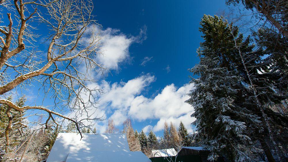 Mírná zima a brzké jaro, slibují meteorologické modely